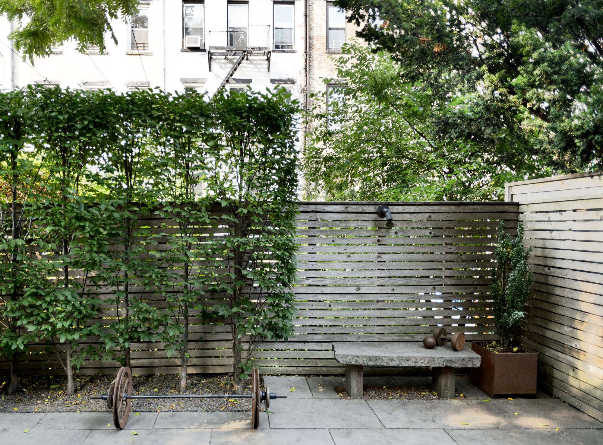 Garden Hacks: 10 Ideas for Privacy Screens - Gardenista