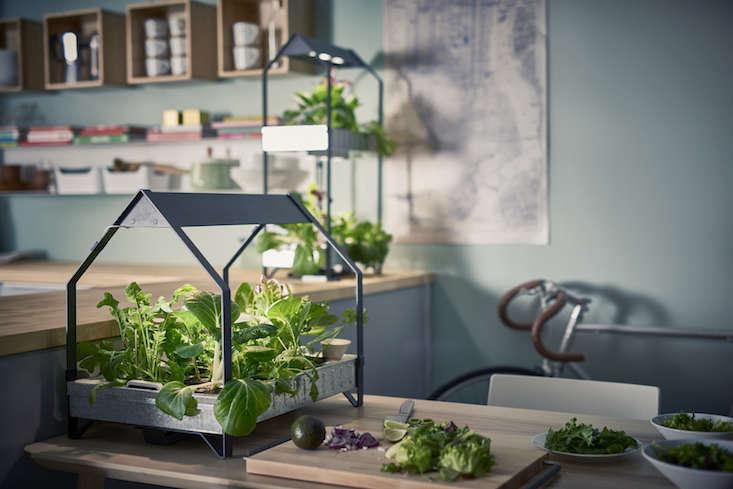editors picks 10 ikea favorites for indoor gardens