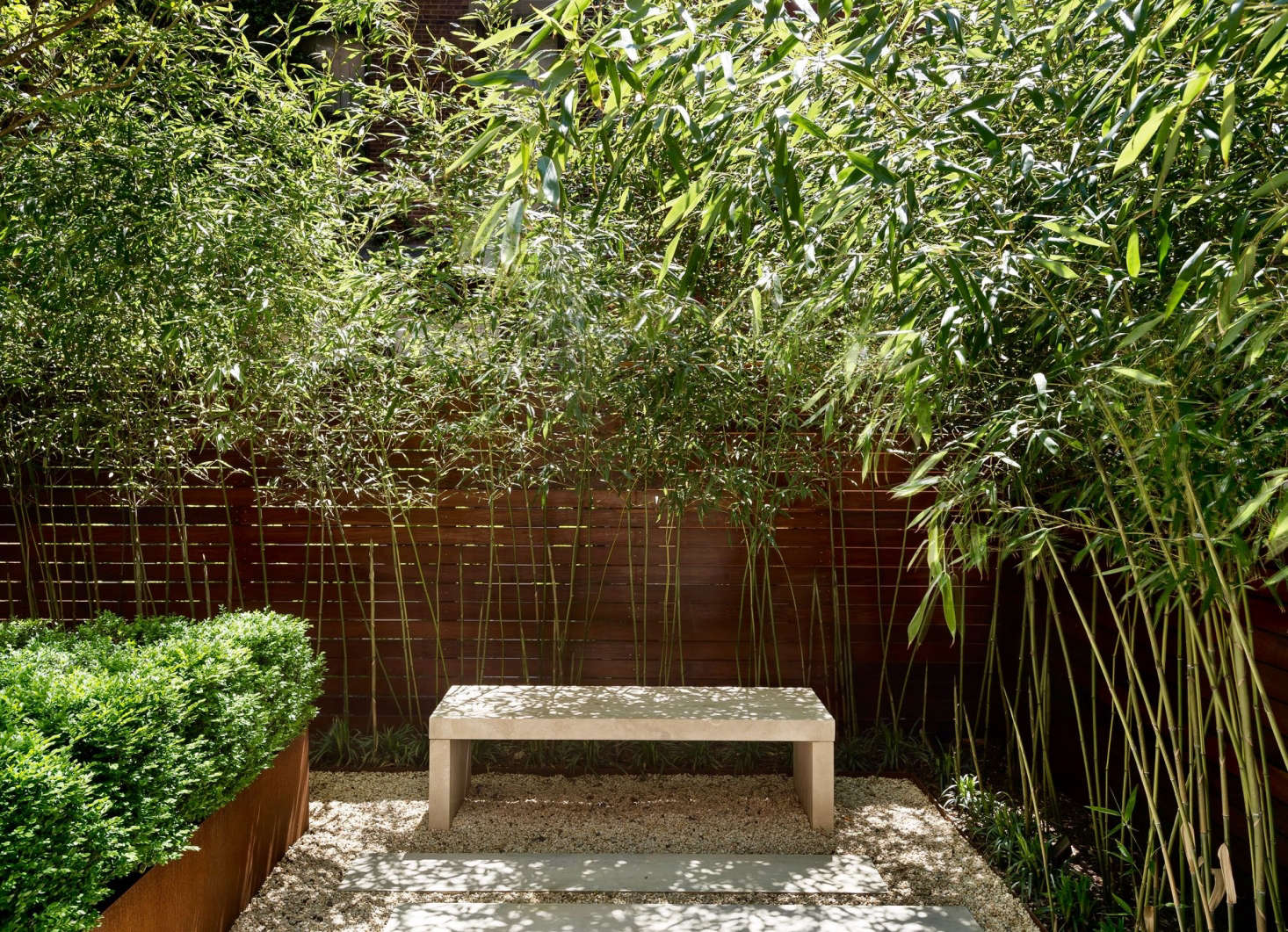 """To lighten the look, strip the lower leaves from bamboo planted against a fence or wall. Photograph by Matthew Williams. See more of this garden in Before & After: From """"Fishbowl"""" to Private Oasis."""