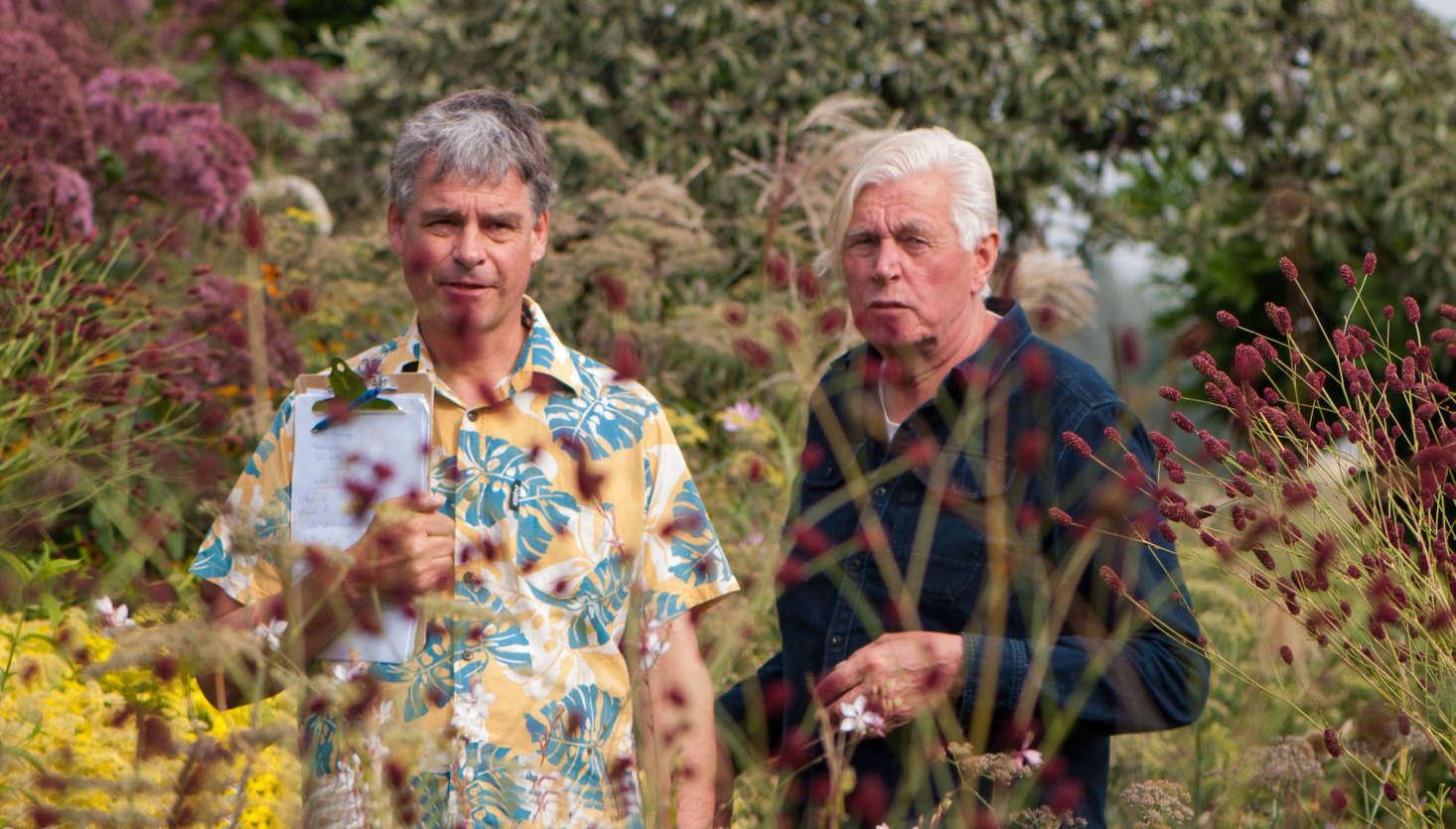 garden design learning to plant the piet oudolf way gardenista