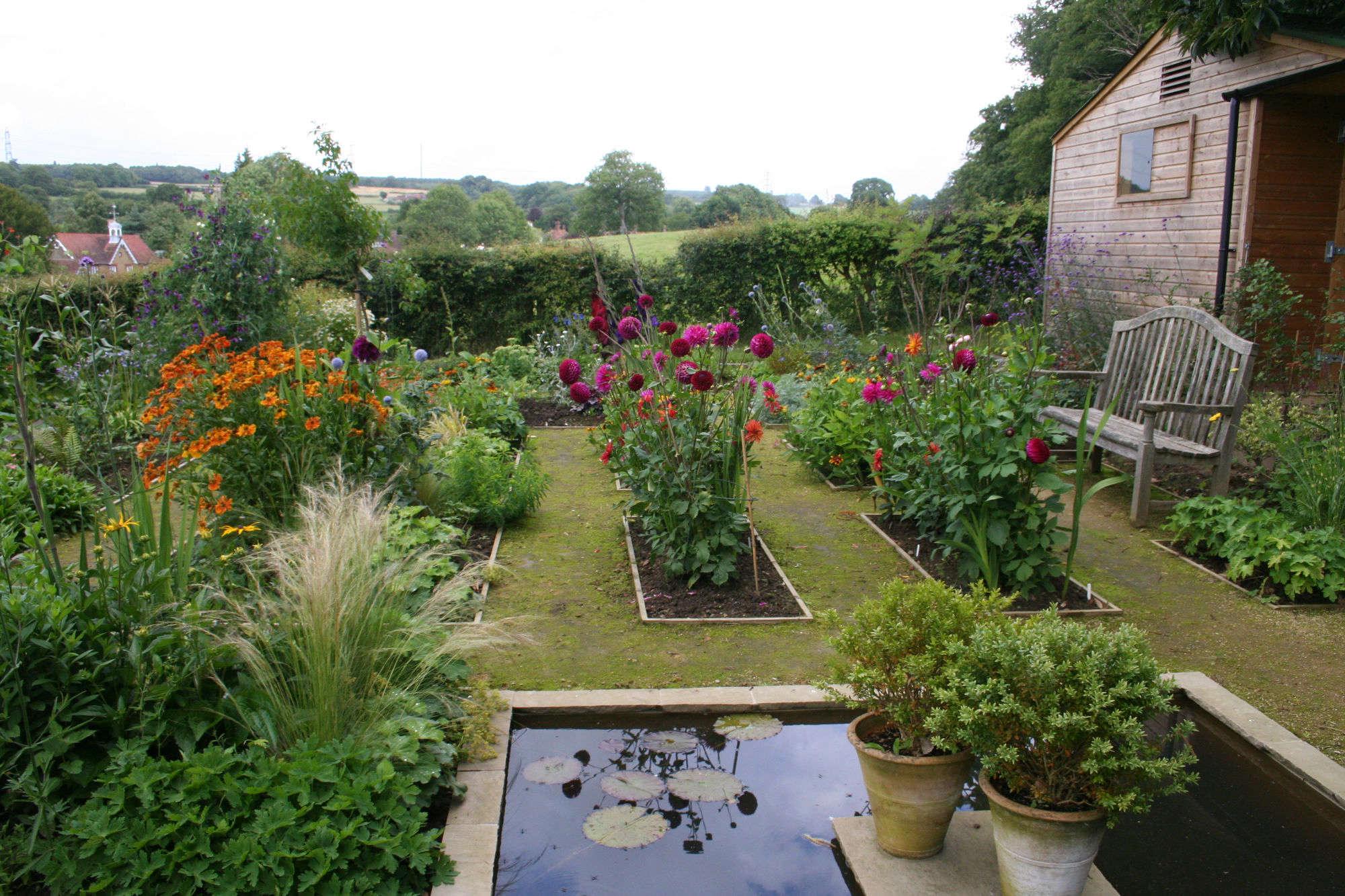 gardening 101 dahlias gardenista