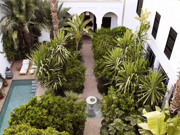 10 Garden Ideas To Steal From Morocco Gardenista
