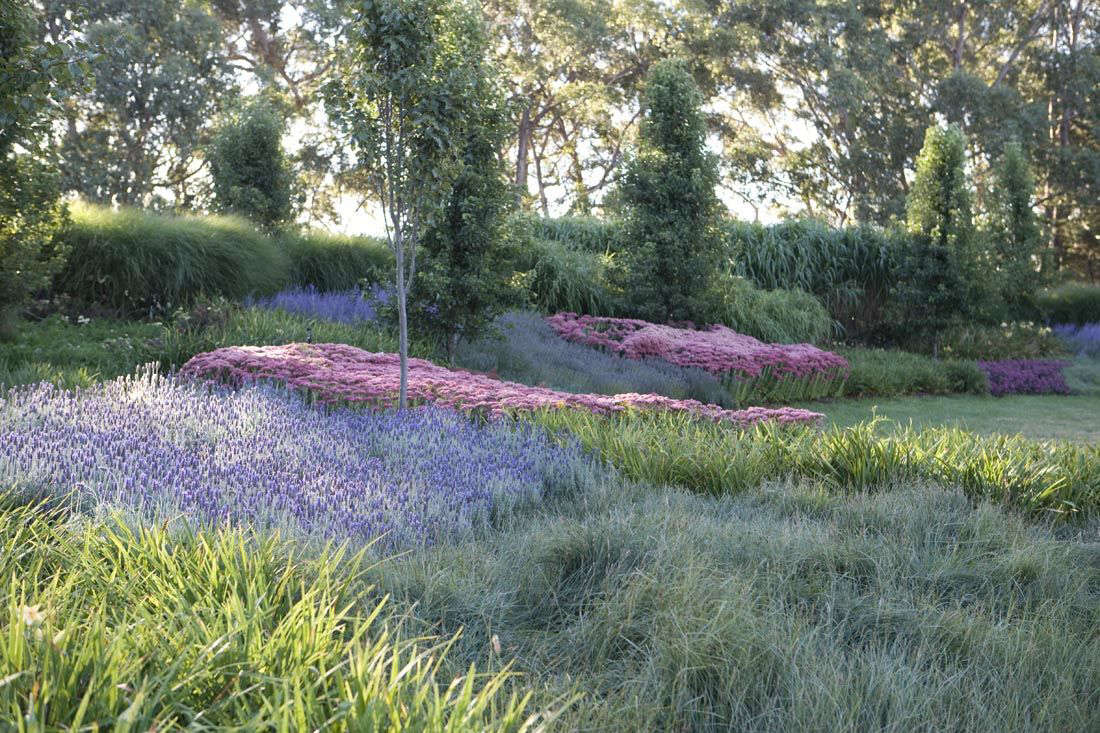 Landscaping Ideas: 22 Lavender Gardens Around the World - Gardenista