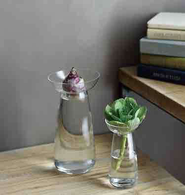 Object Of Desire An Elegant Bulb Vase From Japan Gardenista