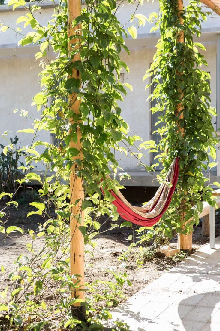 Garden Visit A French Aesthete In Todos Santos Mexico
