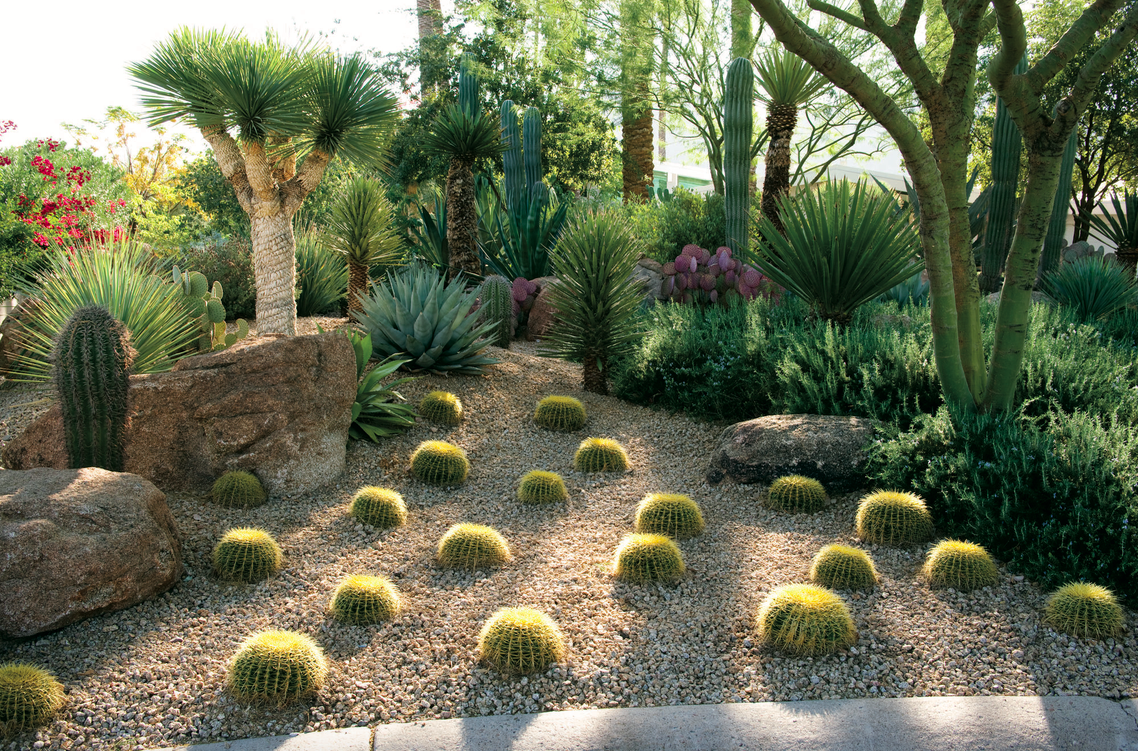 Brian Kissinger Landscape Designer