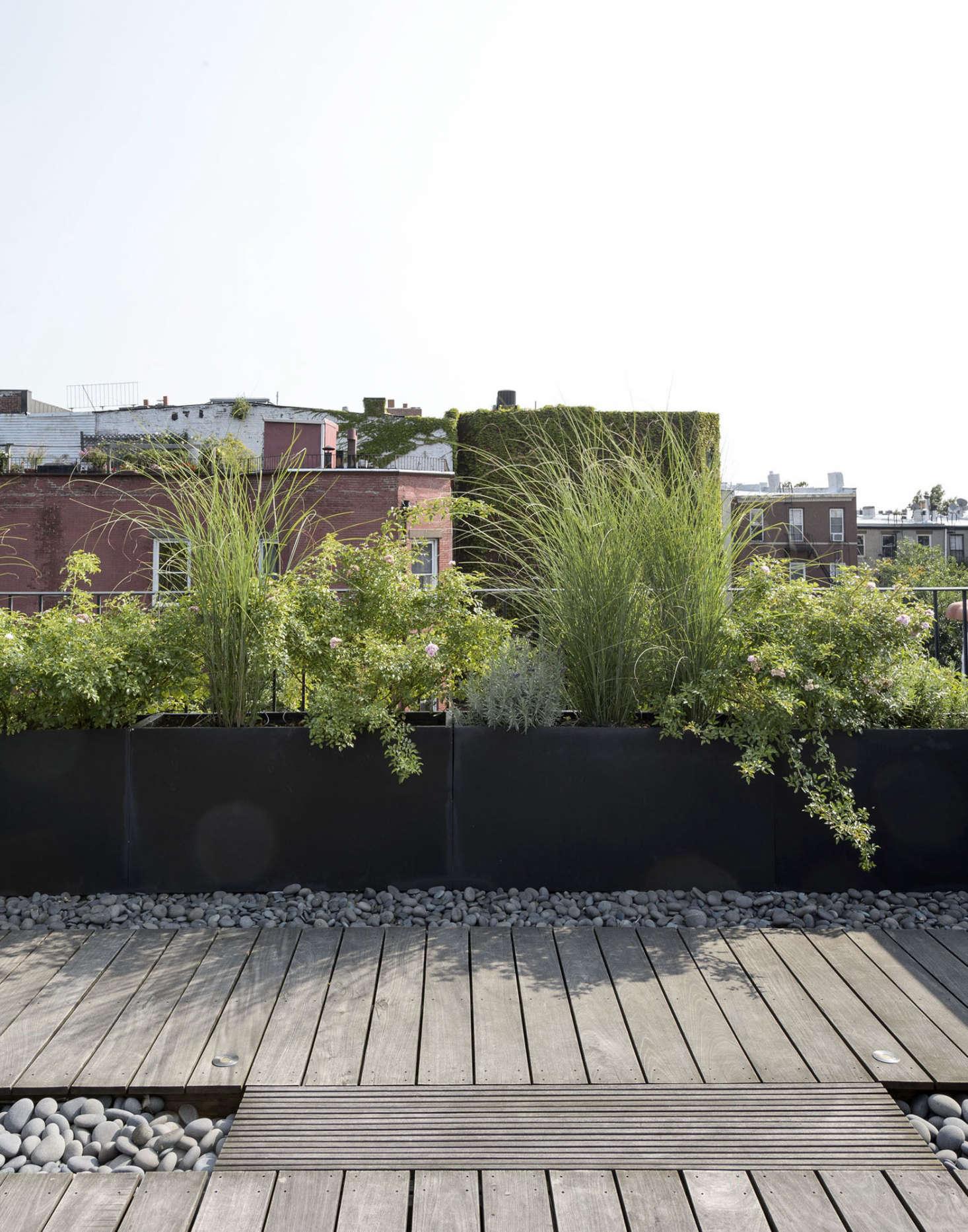 Ask The Expert Roof Garden Basics With Designer Julie