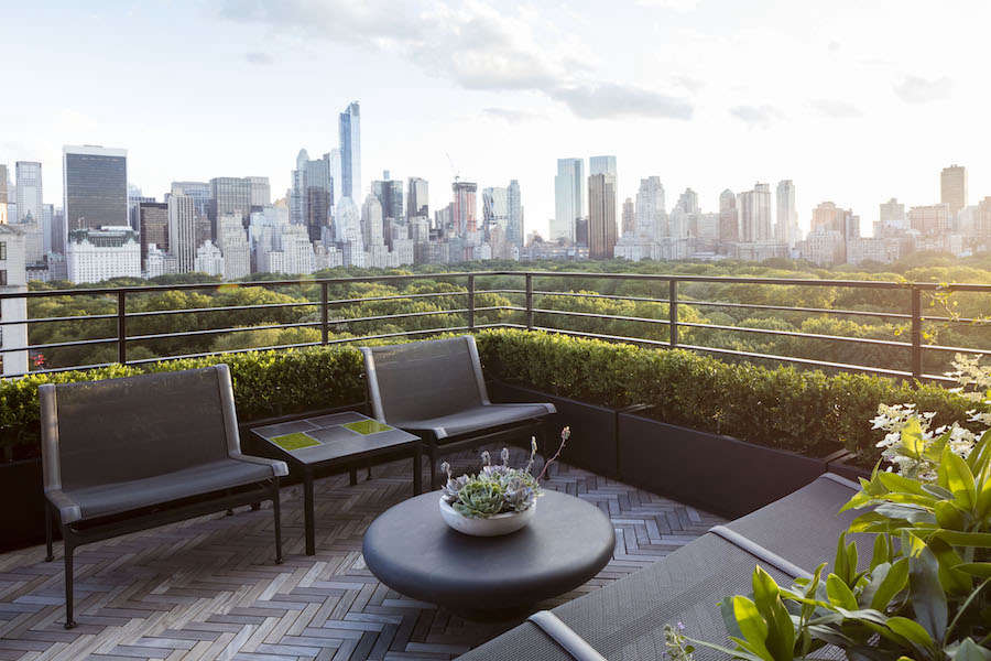 The clients are justifiably protective of their stupendous view of Central Park so Harrison Green installed a low boxwood hedge that blends with the tree canopy of the park while concealing an ugly parapet.