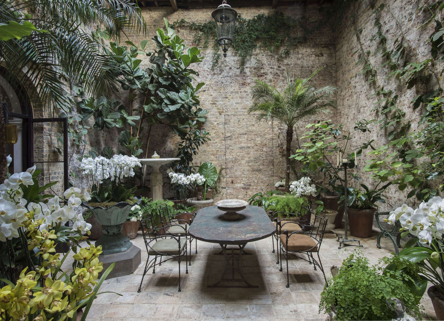 Designer Rose Uniacke London designer fills her London conservatory with orchids. See more in Among the Orchids: Designer Rose Uniacke at Home in London. Photograph by Matthew Williams.
