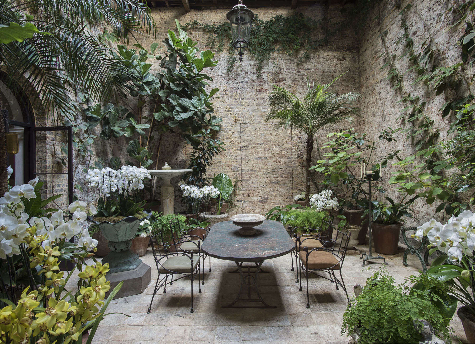 Among The Orchids Designer Rose Uniacke At Home In London Gardenista