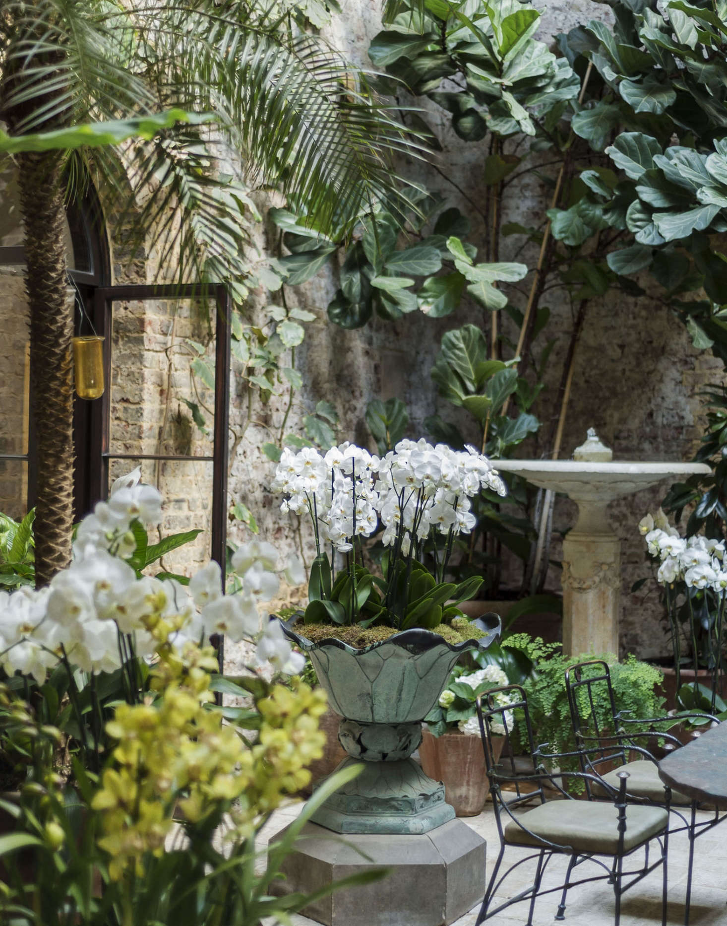 Uniacke chooses all the orchids and likes