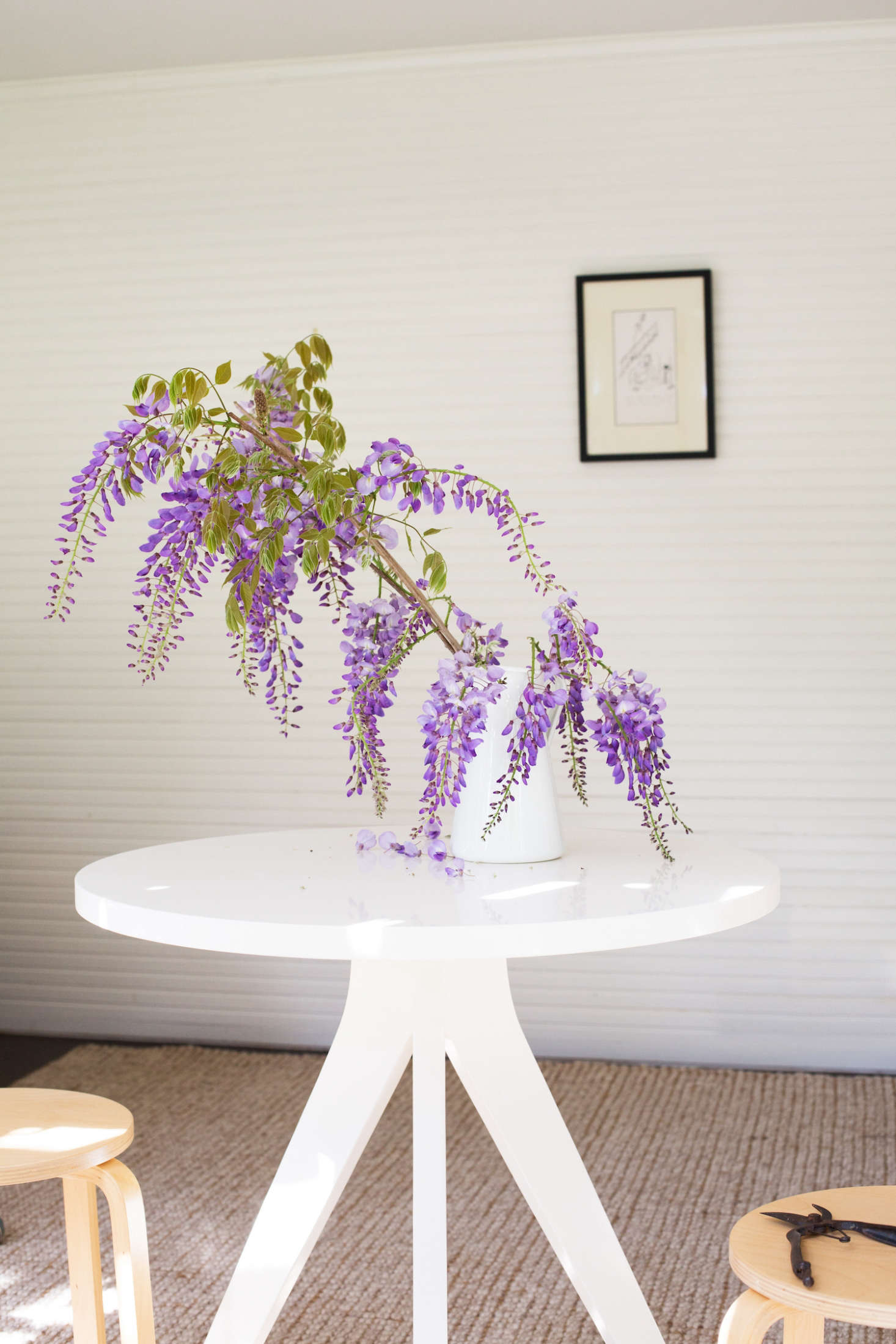 For more, see Mysterious Wisteria: An Irresistible Flower Goes from Vine to Vase. Photograph by Mimi Giboin.