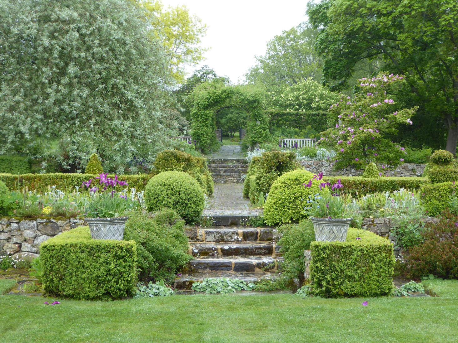 Terracing leads to the rose walk.