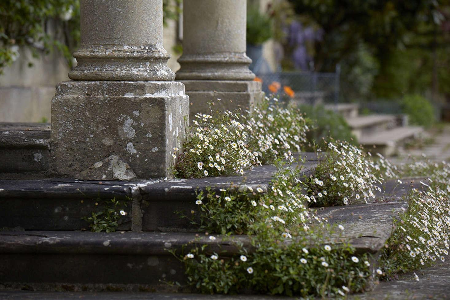 沙恩·斯通在佛罗伦萨的一层,然后把它放在佛罗伦萨的古普提亚的专栏中。来自维特纳·维斯顿的照片。