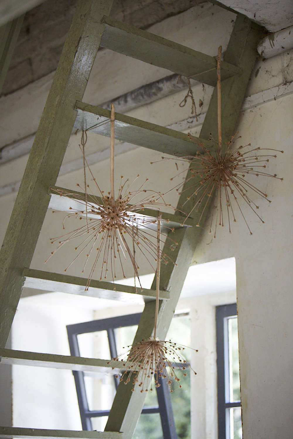 Dried alliums are tied to the hayloft steps, their stems pierced and strung.