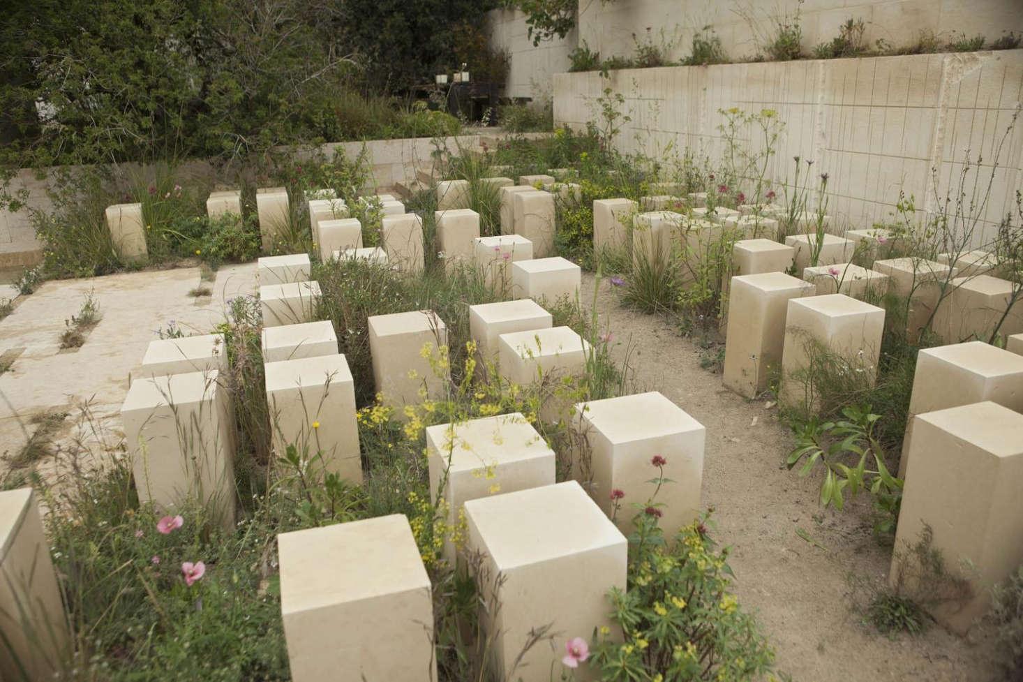 Quarry Shade Garden At Bon Air Park: A Rich Seam: Quarry Gardening At The Chelsea Flower Show