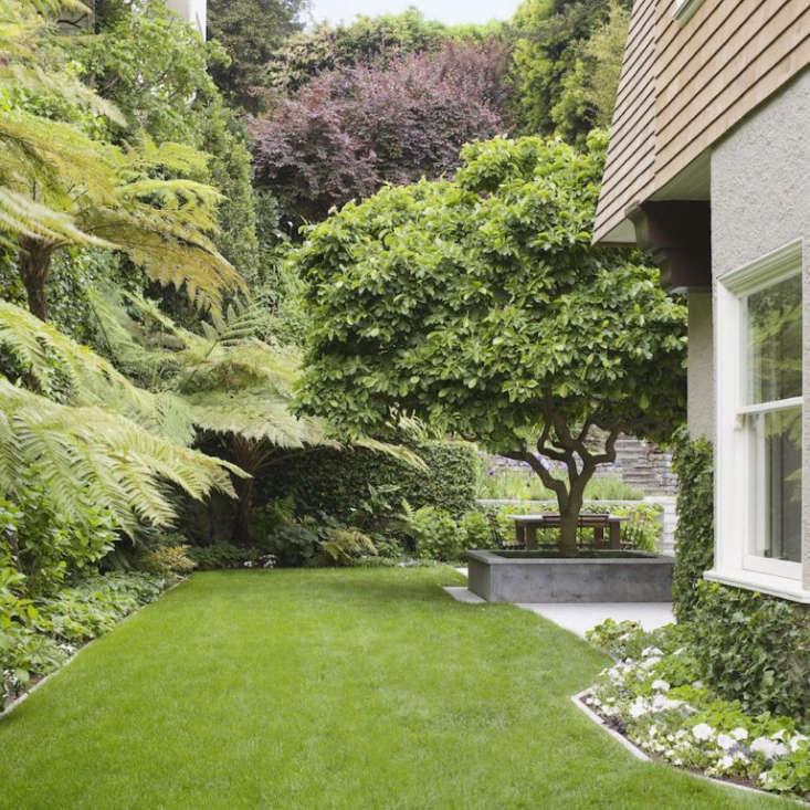 Backyard Rectangular Garden Design Layout on Rectangular Backyard Design id=64307