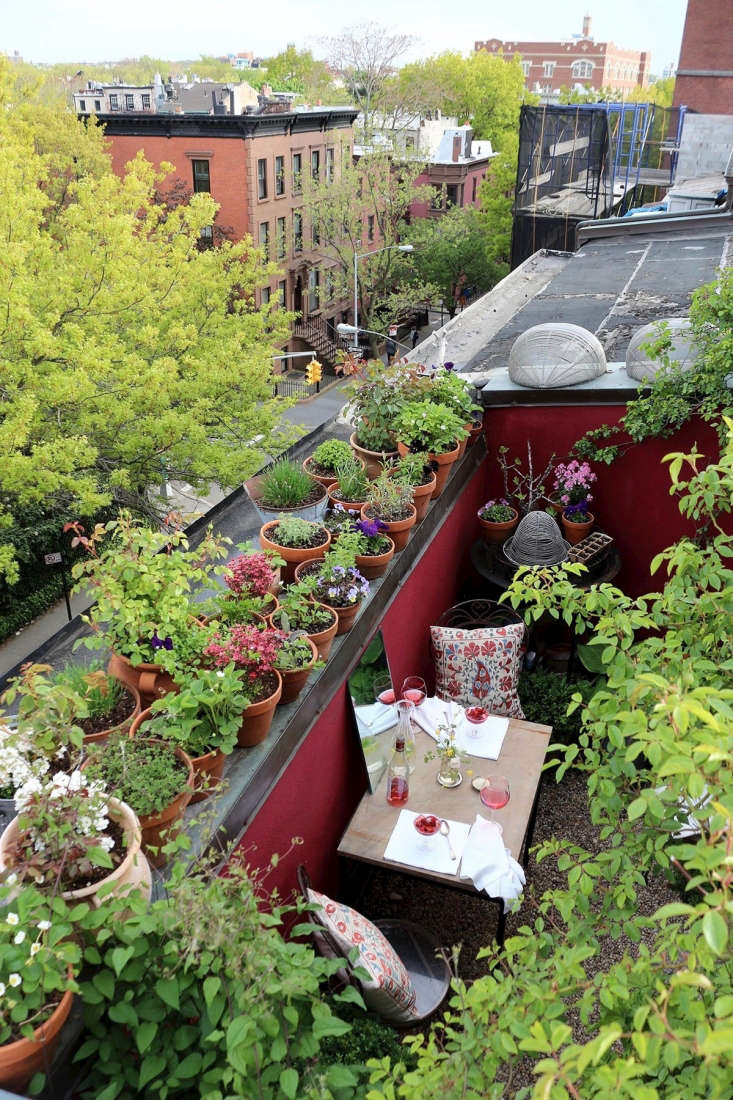 66 square feet brooklyn garden Marie Viljoen