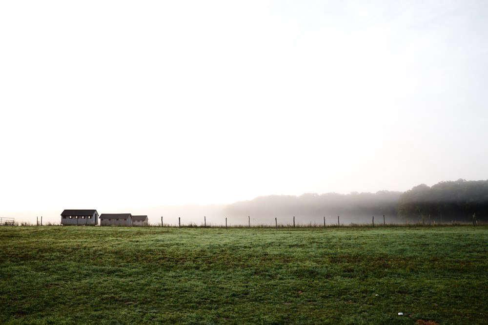 Photograph via Grey Barn.