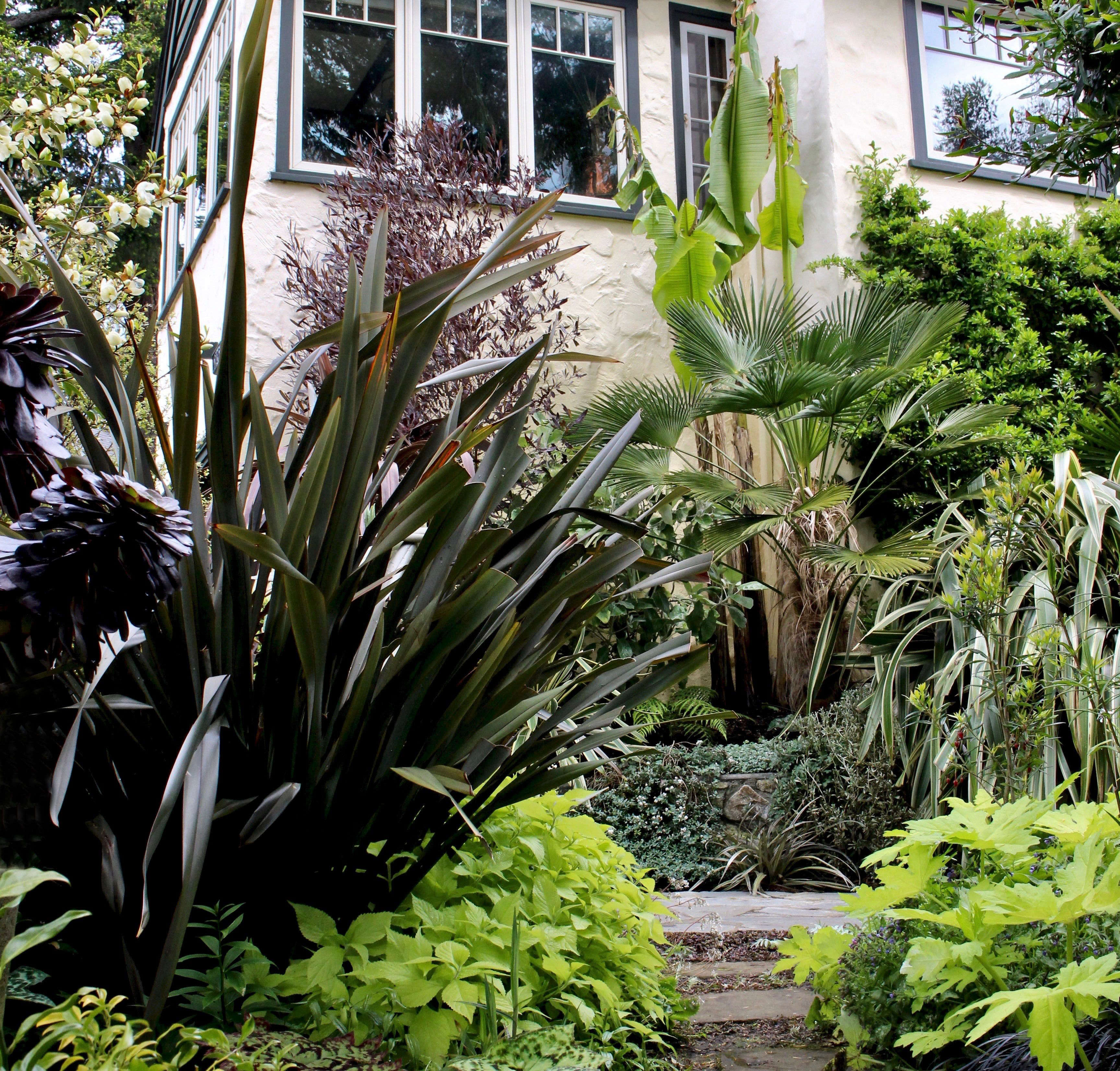 The New Canadian Garden: Tropical Plants In British
