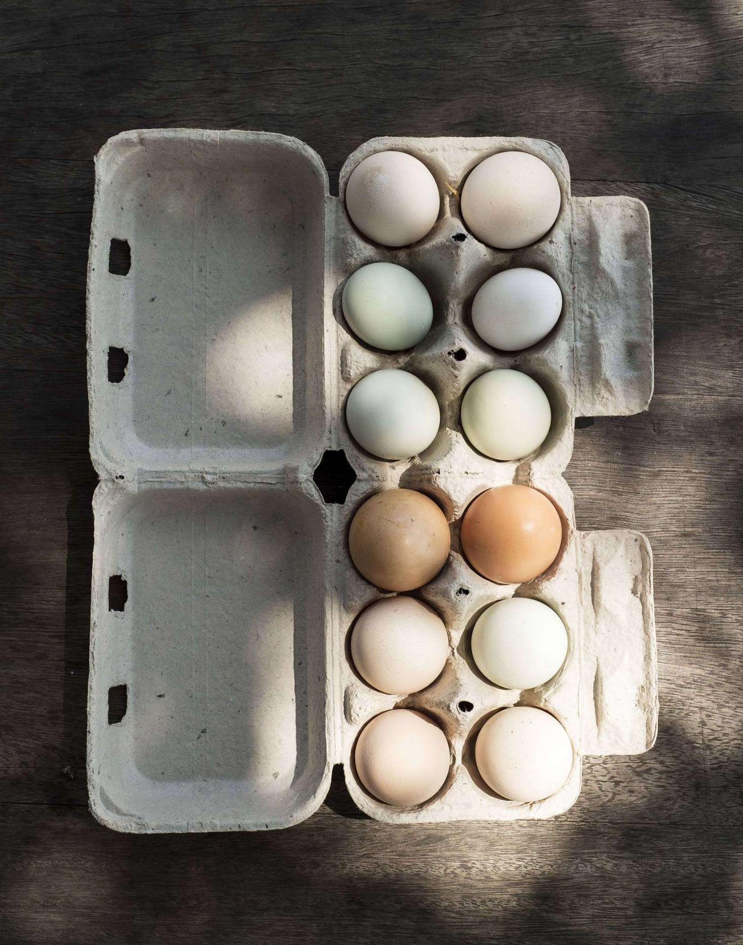 Everything produced at Grey Barn farm is organic: no synthetic fertilizers, growth hormones, herbicides, orpesticides are used.