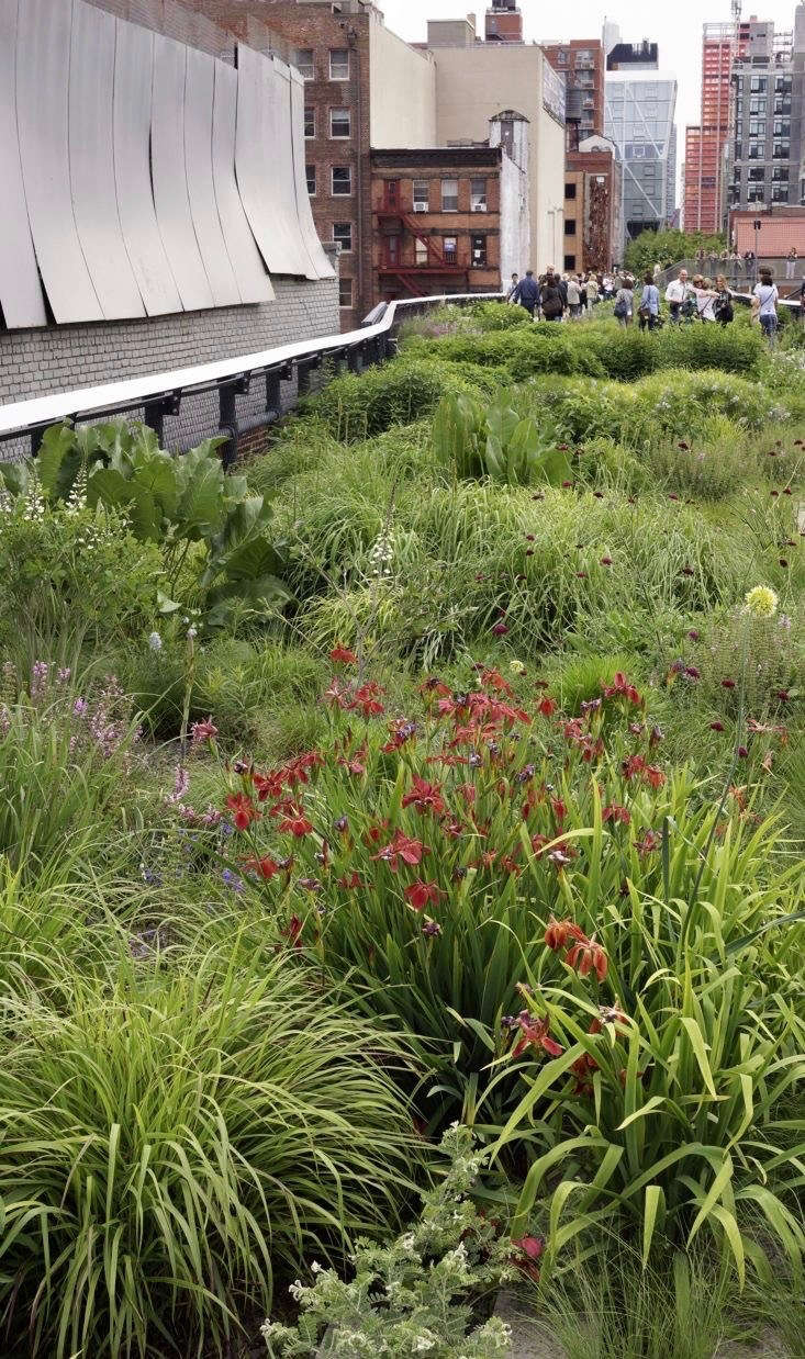 High Line Nyc The Inside Story By Landscape Designer Piet Oudolf