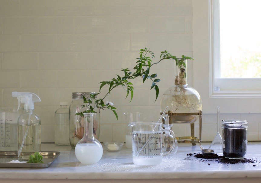 To measure, mix, and store our homemade garden remedies we use science beakers (we have a thing for them), recycled jars, and clear glass bottles.