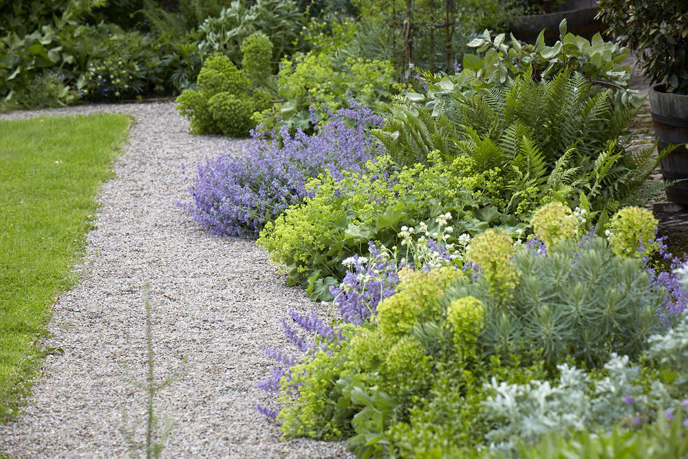 10 Things Your Landscape Designer Wishes You Knew About