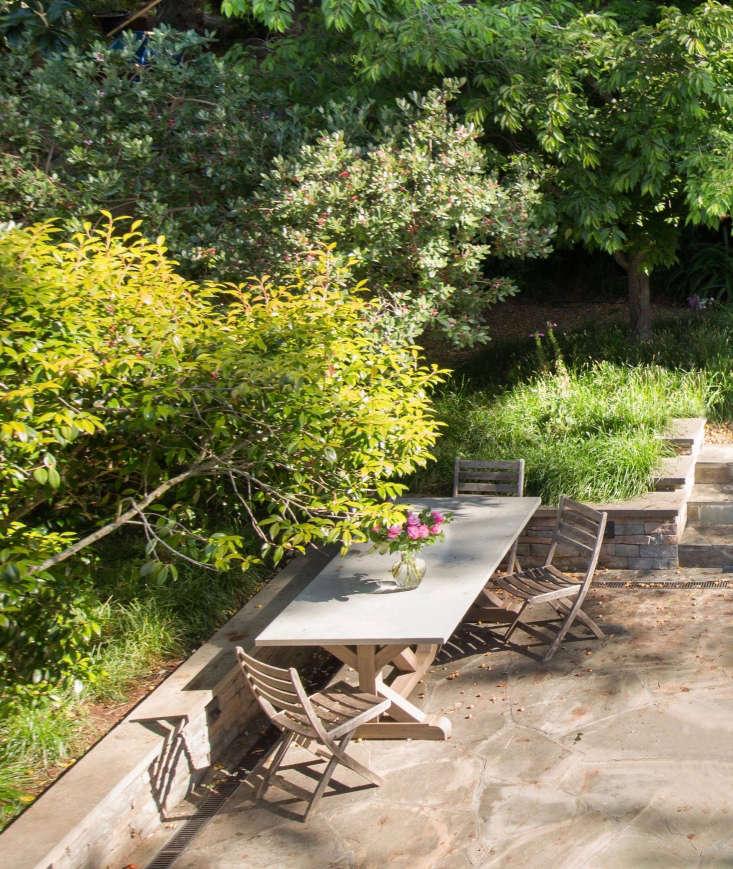Garden Visit A Backyard Meadow In Mill Valley Ca