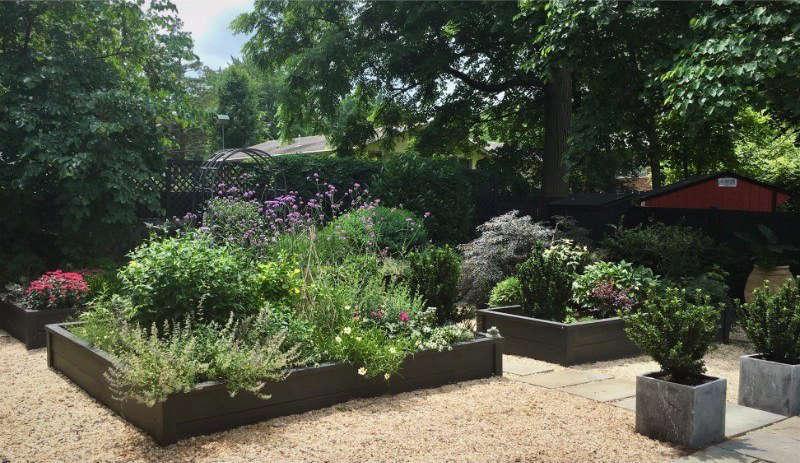 KK Nichols Submitted His Back In Black Garden In Fairfax, Virginia, Chosen  By Deborah