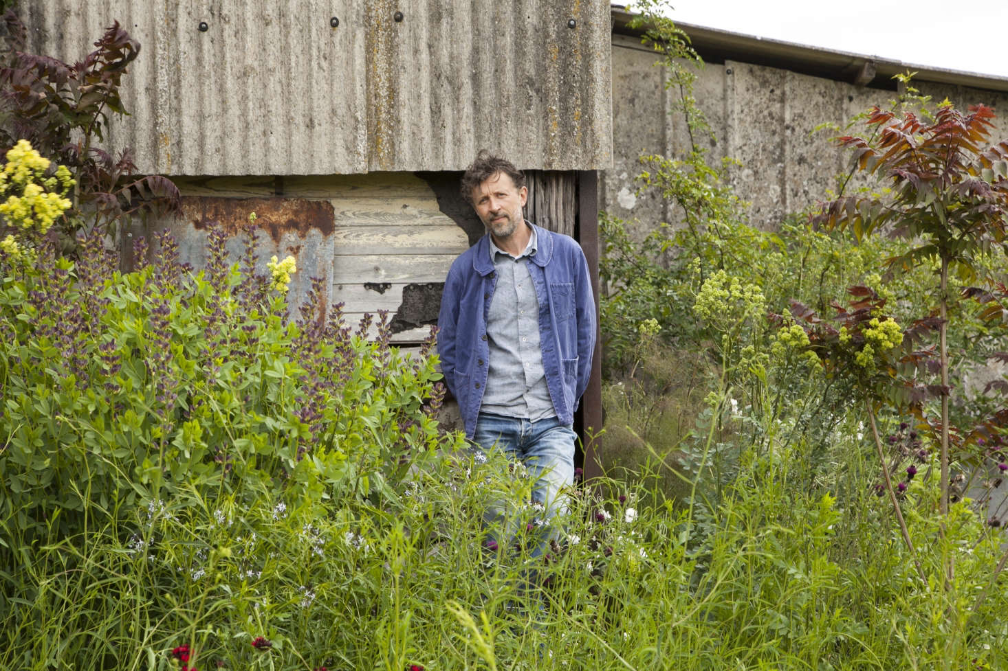 Natural Selection: A Year in the Garden by Dan Pearson - Gardenista