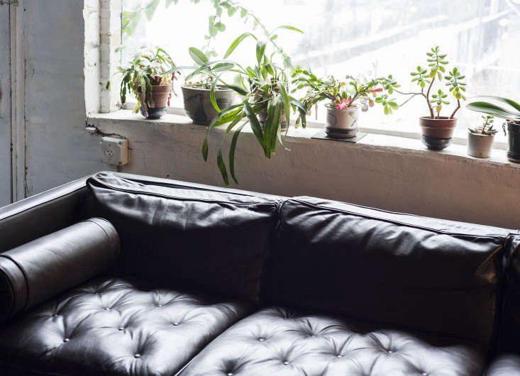 在纽约,一个不会出现的地方,在花园里,花园里的花园,就会有一种不同的公寓。在未来的世界上看到了其他的世界,像个小混混