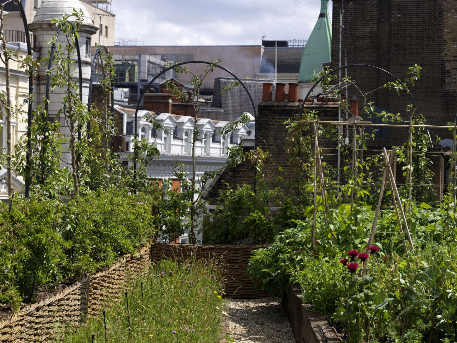 Photograph Courtesy Of Ham Yard Hotel. For More Of This Garden, See Ham Yard