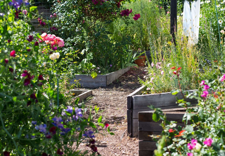 Raised Garden Beds. An Effective And Easy Solution For Less Than Ideal Soil  Conditions, Raised Beds Increase Yield And Reduce The ...