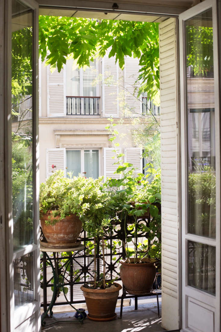 Paris balcony garden French doors railing by Mimi Giboin