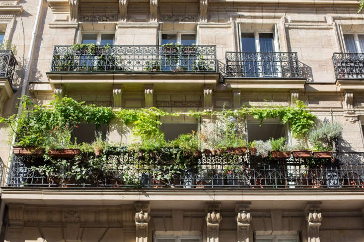Paris balcony garden railing by Mimi Giboin