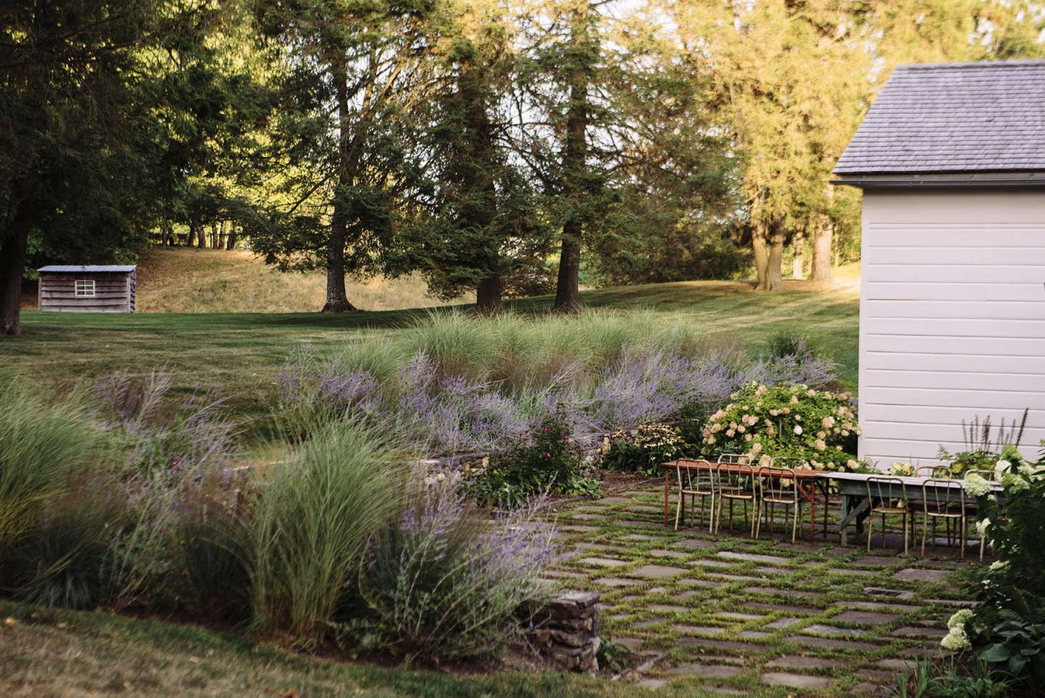 Easy-to-care-for perennialsbloom from spring through autumn.