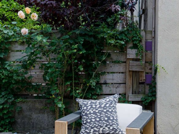 Before After A 3000 Garden Makeover for Brooklyn Designer