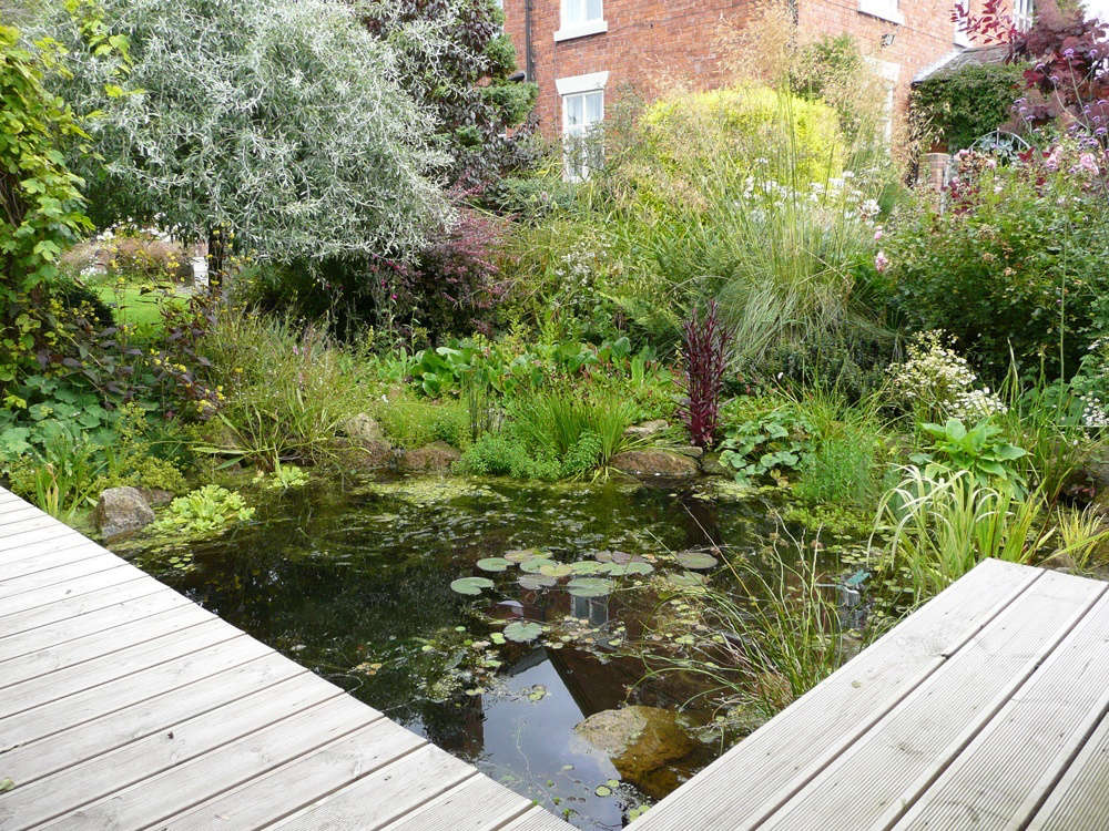 Best uk amateur garden an artist 39 s country garden by bev horsley gardenista - The pond house nature above all ...