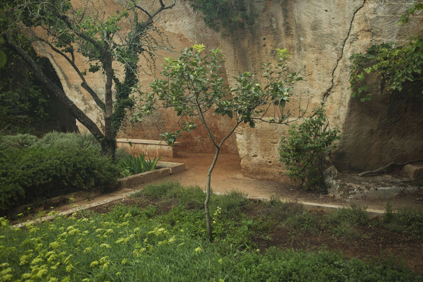 Menorcan Muse: Lessons from the Labyrinth in an Ancient Quarry ...