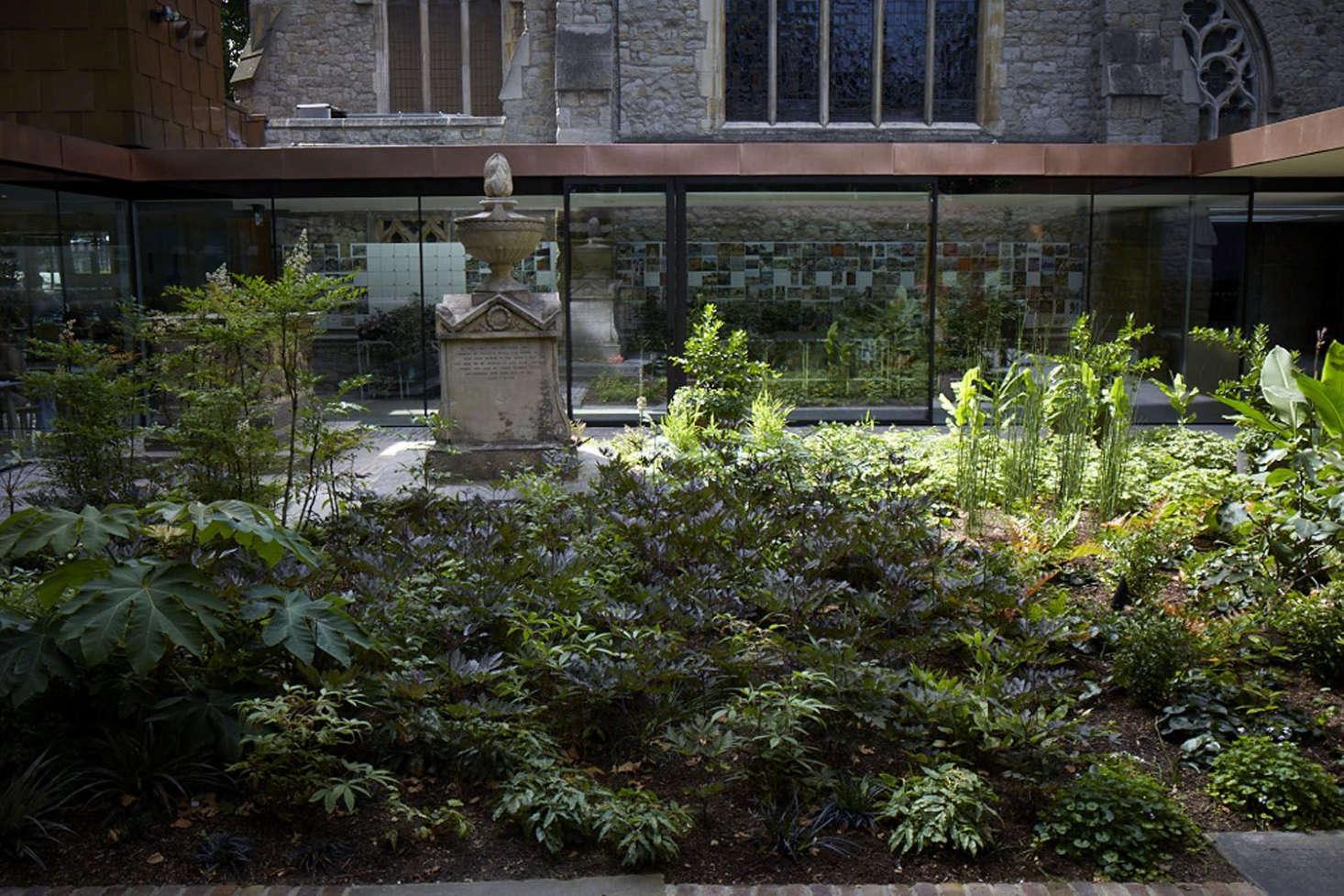 在花园里,花园中有一种不同的花园,还有类似的稀有品种的小品种。