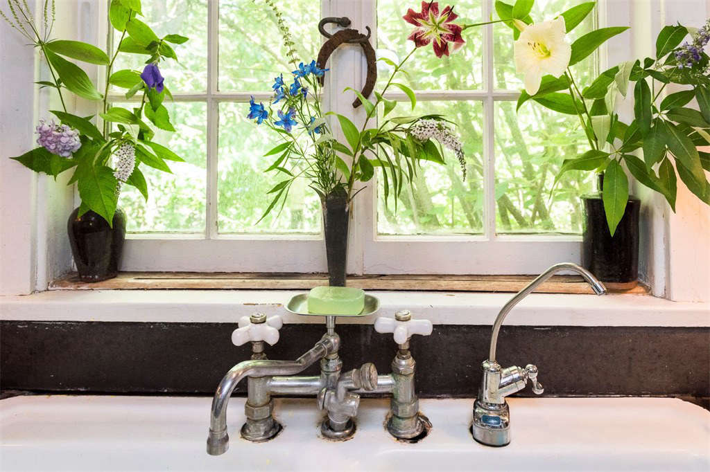 Flowers from Judy Tomkins garden are in vases on the windowsill over the kitchen sink.