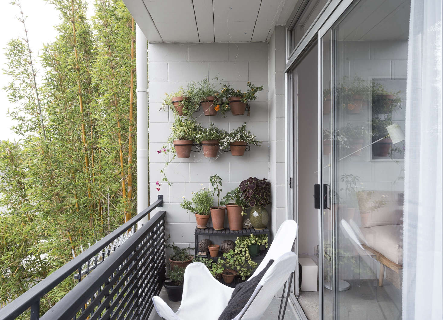 Steal This Look Balcony Garden on a Budget Gardenista