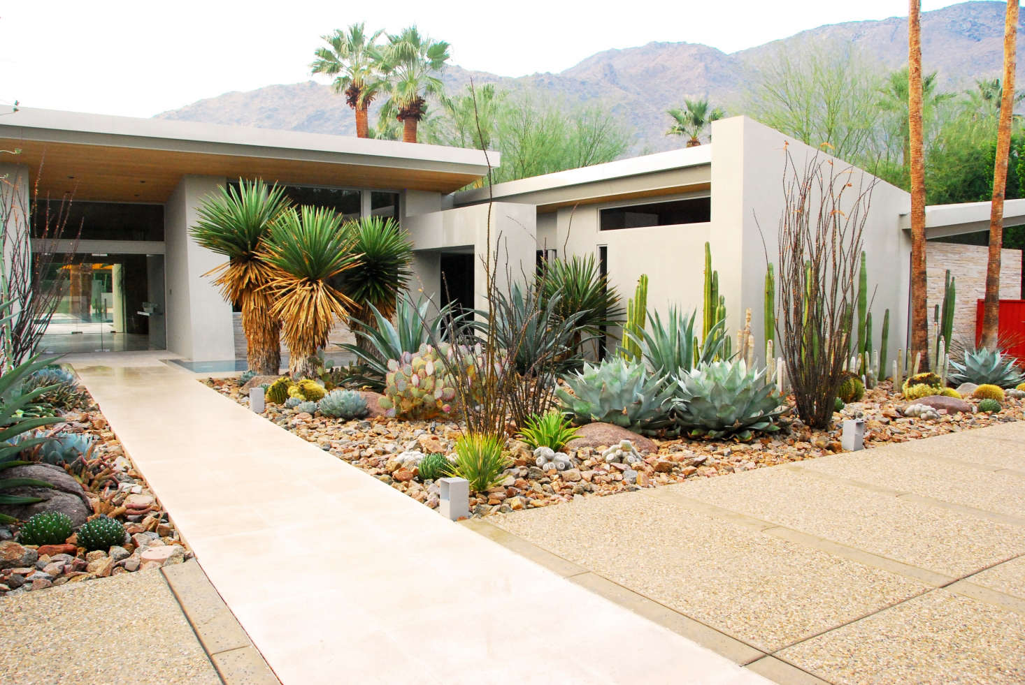 In mid-century gardens, a scattering of shrubs was low maintenance yet  stylish. - Required Reading: The Mid-Century Modern Garden By Ethne Clarke