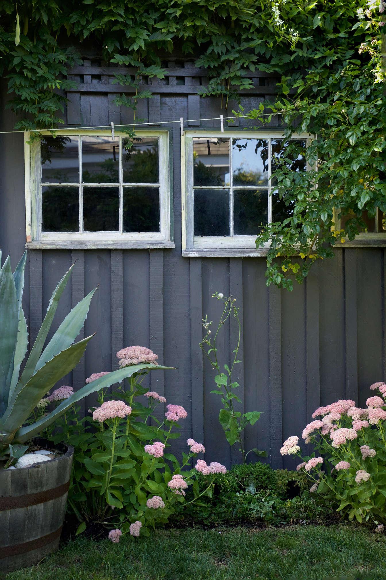 从浴室和后院的后院,然后把它的旧窗帘从墙上放在地上,然后又把它从树上缝起来了。