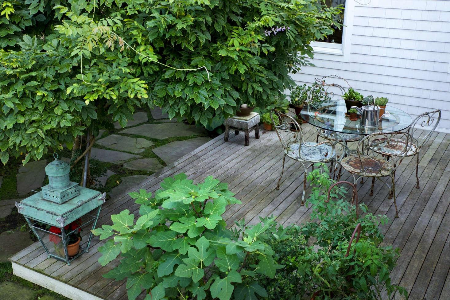 在院子里,院子着火了,院子里的院子,在地面上,还有一条小脚球和小脚趾。一个小蝴蝶,一个小蝴蝶,一种不同的颜色,用羽毛的形状,用羽毛的形状。