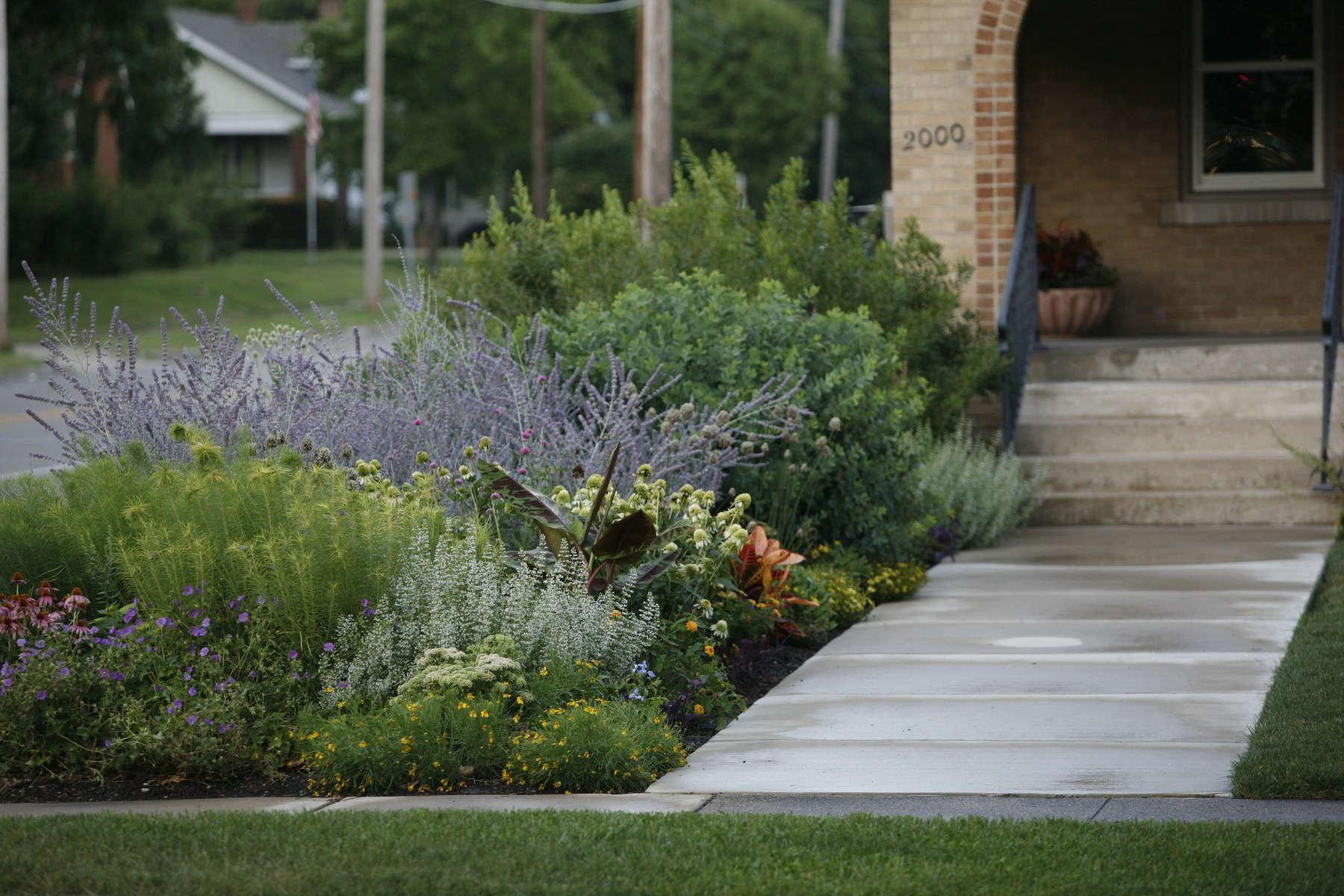 10 Ideas to Steal from Prairie-Style Gardens - Gardenista