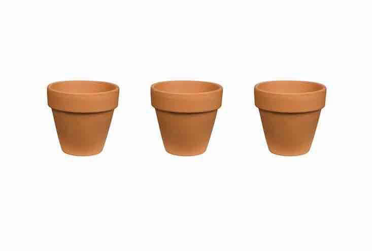 A 6-inch Red Terra Cotta Clay Pot is $1.24 apiece from Home Depot.