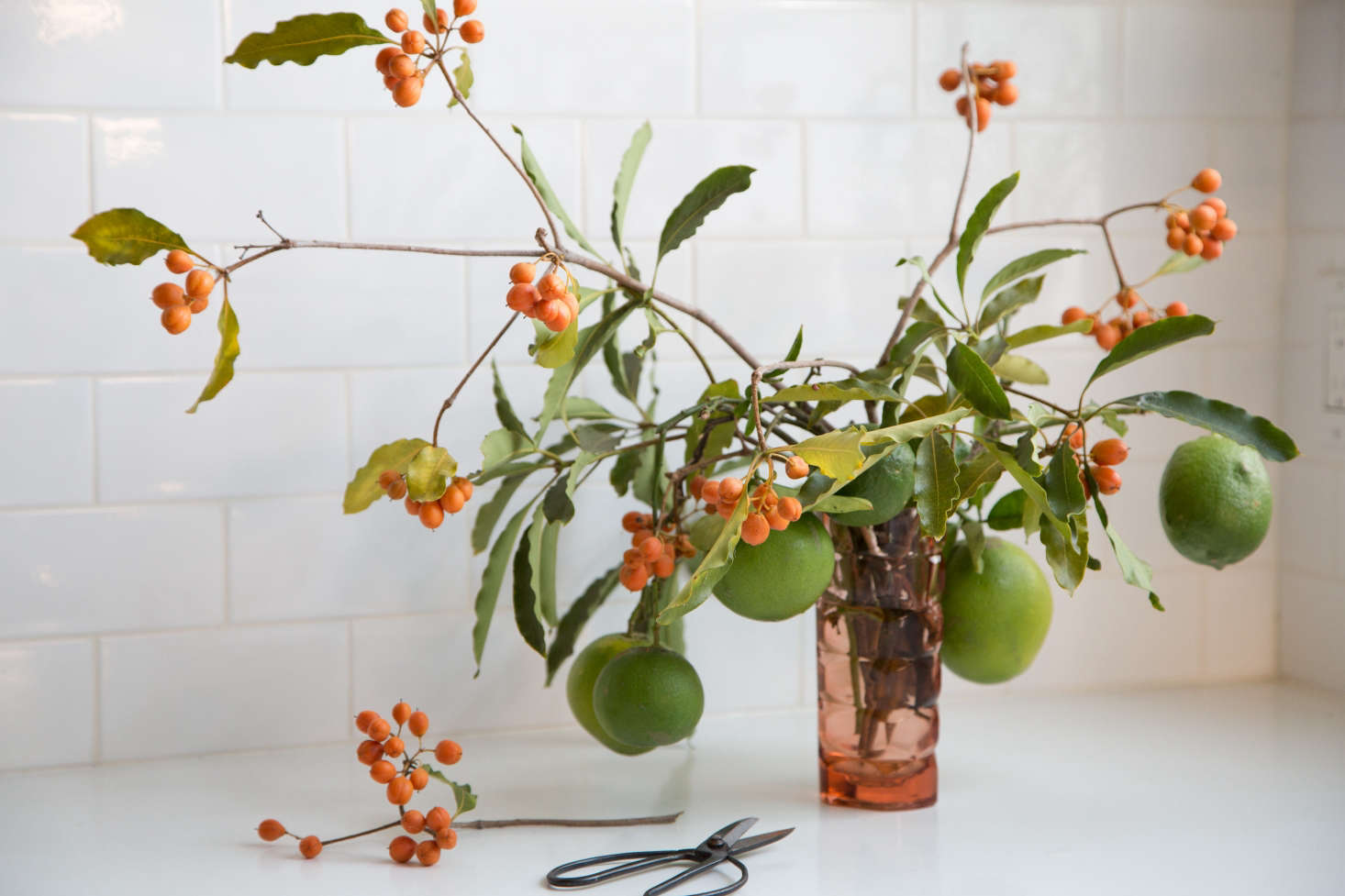Floral designer Sophia Moreno-Bunge clipped the orange berries while on a walk in her neighborhood, and found the unripe lemons in a friend's yard. Photograph by Beth Coller for Gardenista, from  Ways to Bring Nature Home with Sophia Moreno-Bunge.