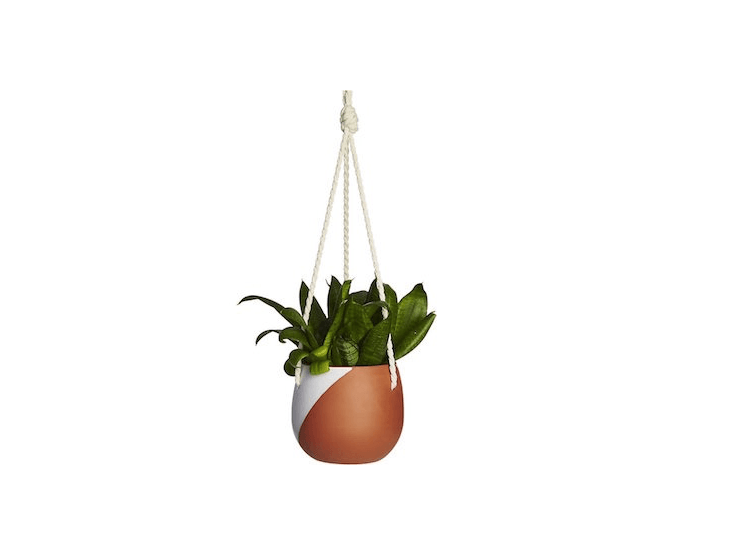 The New Neutrals 10 Hanging Planters That Look Good In